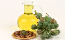 WHAT IS CASTOR OIL