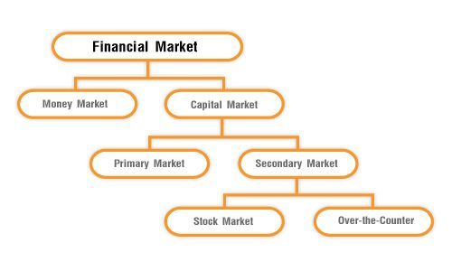 What Are The Maun Functions Of The Financial Market
