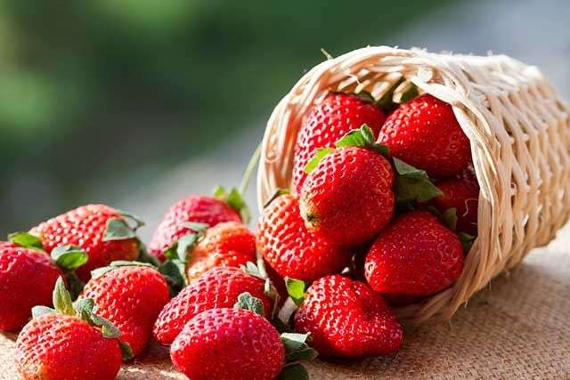 Strawberry Benefits to Fight Cancer