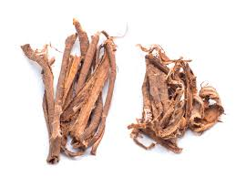 Slippery Elm Root Bark