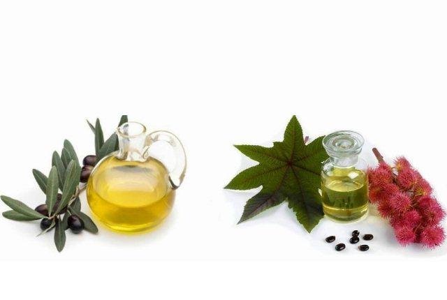 Vaseline, Castor Oil, And Olive Oil