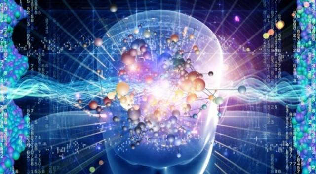 Brain Cell Atlas