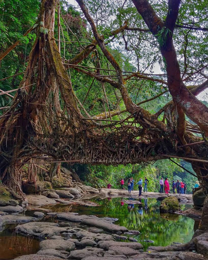 Beautiful Natural Bridge