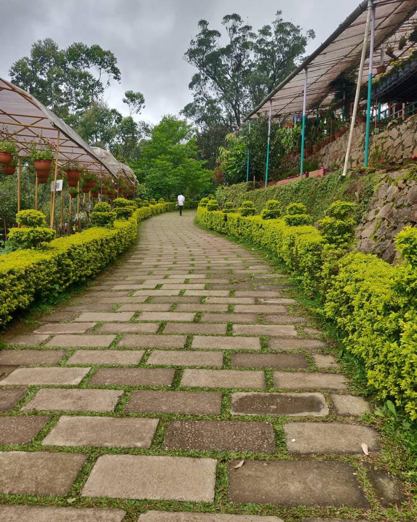Floriculture Center