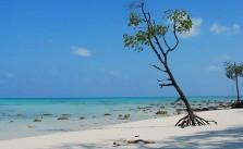 longest coastline in India