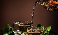 best green tea in indian market